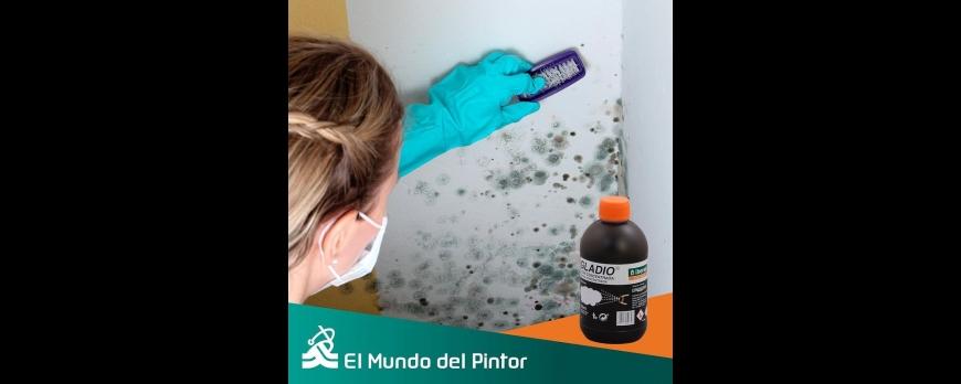 Di adiós a las paredes con humedades y hongos con Gladio.